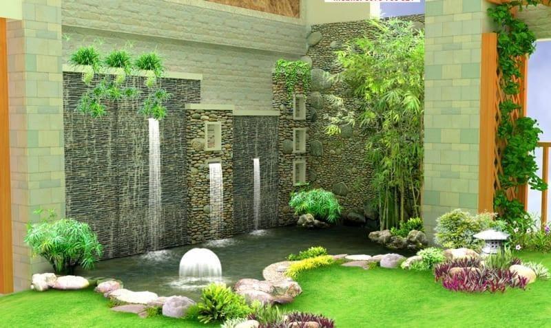 các loại cây phong thủy nên trồng trông sân vườn
