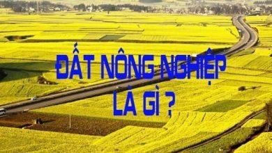 đất nông nghiệp là gì